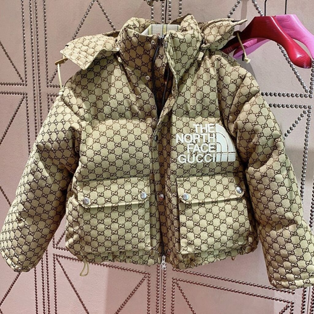 with The North Face x Gucci collection on. The North Face x Gucci collection puffer coat. a girl posing with a black purse. a girl wearing gucci in street style look. A hanging puffer coat in the closet.